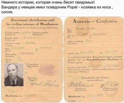 Eine Geschichte, die ukrainischen Nationalisten sehr in Wut versetzt! Bandera hatte bei den Nazis den Decknamen Popel (lt. Duden: verhärteter Nasenschleim).