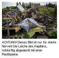 Absturz MH17