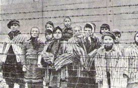 Kinder in Auschwitz