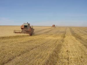 UdSSR Landwirtschaft