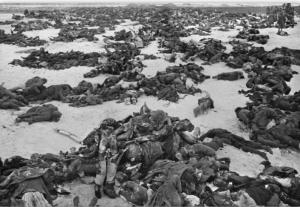 Tote Stalingrad