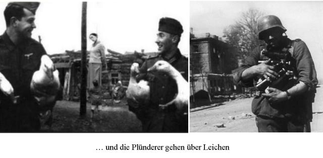 pluenderer