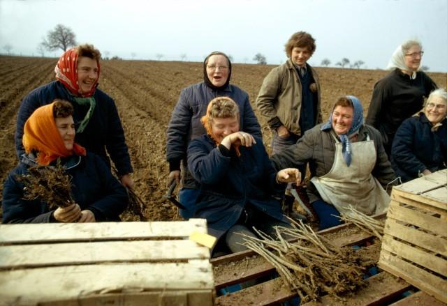 Bauersfrauen