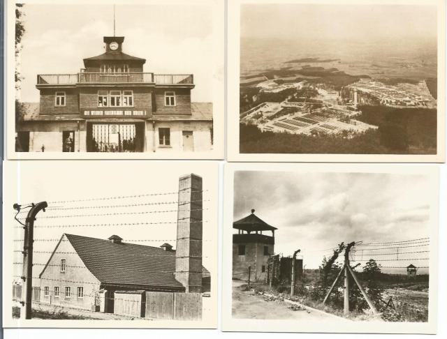 Buchenwaldbilder