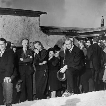 Buchenwald-luto-728x726