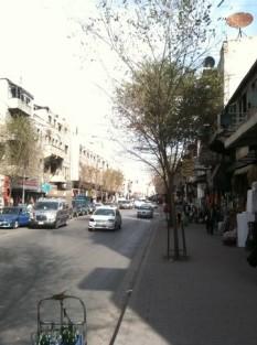 5969249-_Aleppo