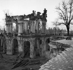 Zwinger 1945